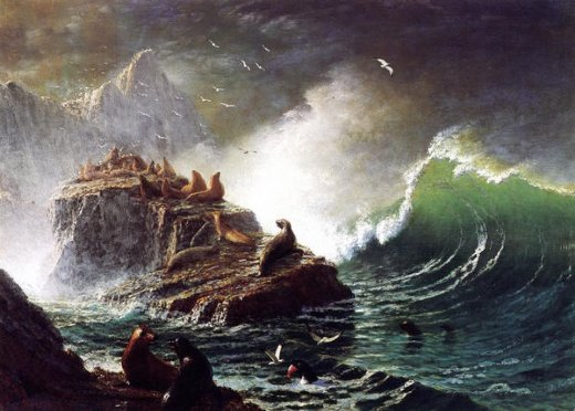 albert bierstadt seals on the rocks farallon islands painting