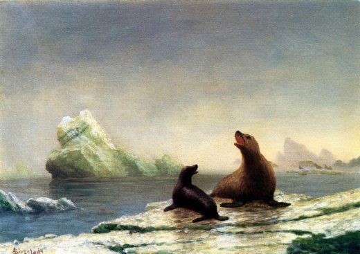 albert bierstadt seals painting