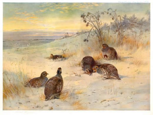 archibald thorburn close of a winter s day prints