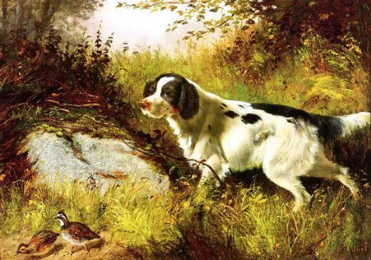 arthur fitzwilliam tait dog and quail painting