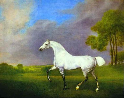 george stubbs a grey horse paintings