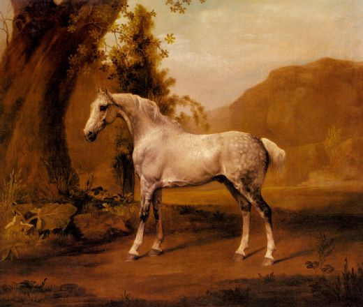 george stubbs a grey stallion in a landscape oil painting