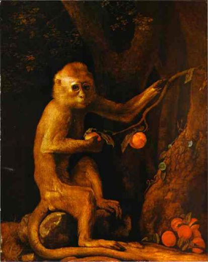 george stubbs green monkey paintings