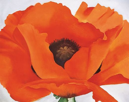 georgia o keeffe red poppy painting