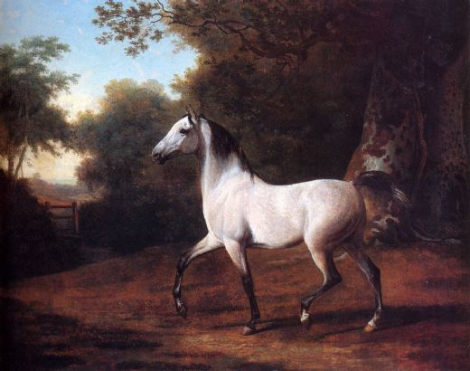 jacques laurent agasse a grey arab stallion in a wooded landscape paintings