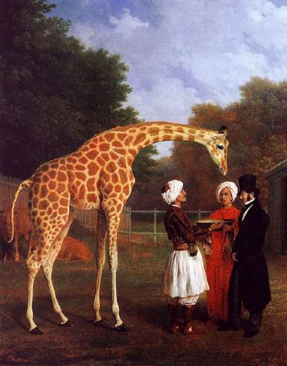jacques laurent agasse the nubian giraffe painting