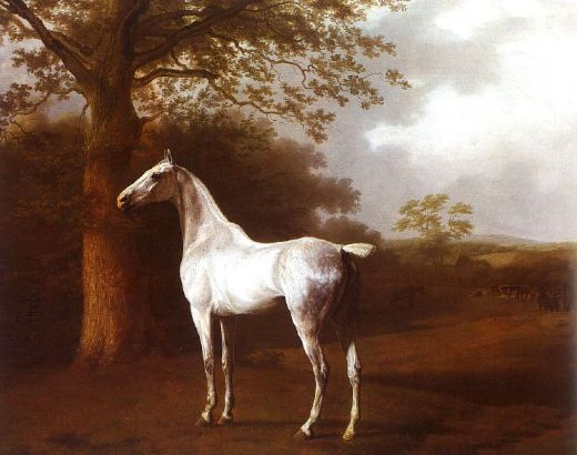 jacques laurent agasse white horse in pasture oil painting