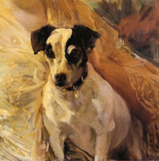 joaquin sorolla y bastida portrait of a jack russell paintings