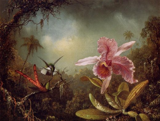 martin johnson heade orchid with two hummingbirds painting