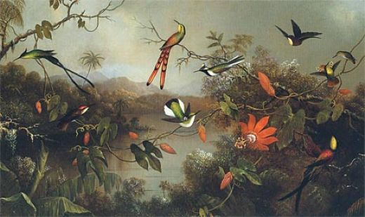 martin johnson heade tropical landscape with ten hummingbirds 1870 oil painting