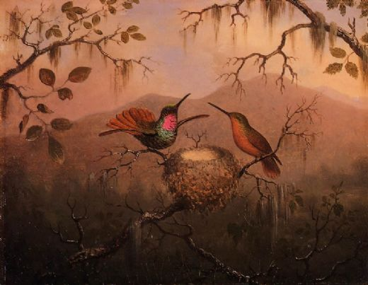 martin johnson heade two hummingbirds at a nest paintings