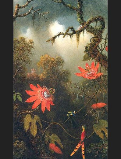 martin johnson heade two hummingbirds perched on passion flower vines paintings