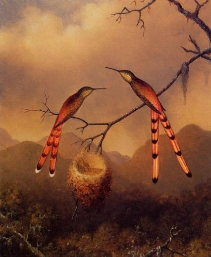 martin johnson heade two hummingbirds with their young oil painting