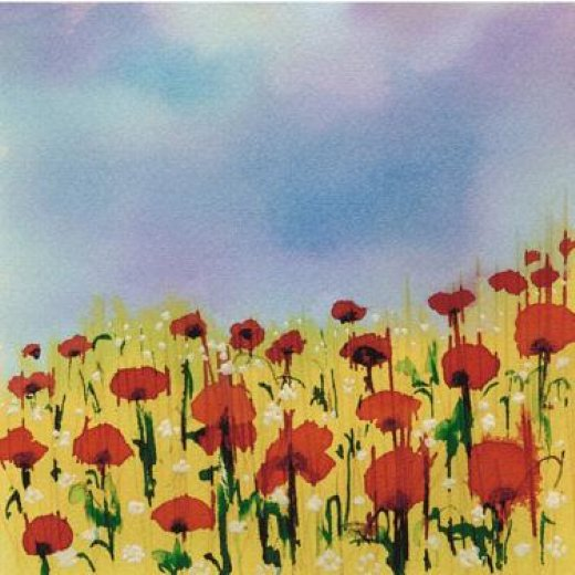 original paintings a field of poppies painting