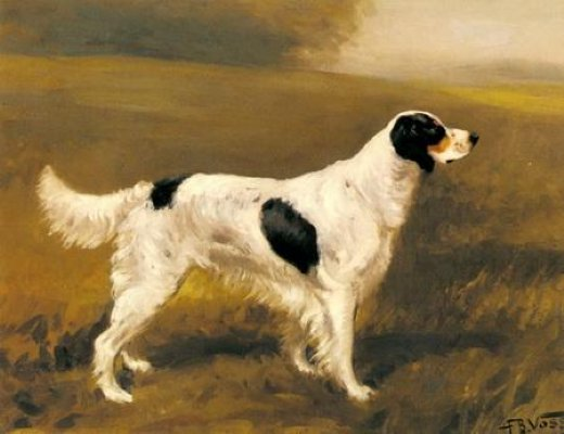 original paintings english springer spaniel painting