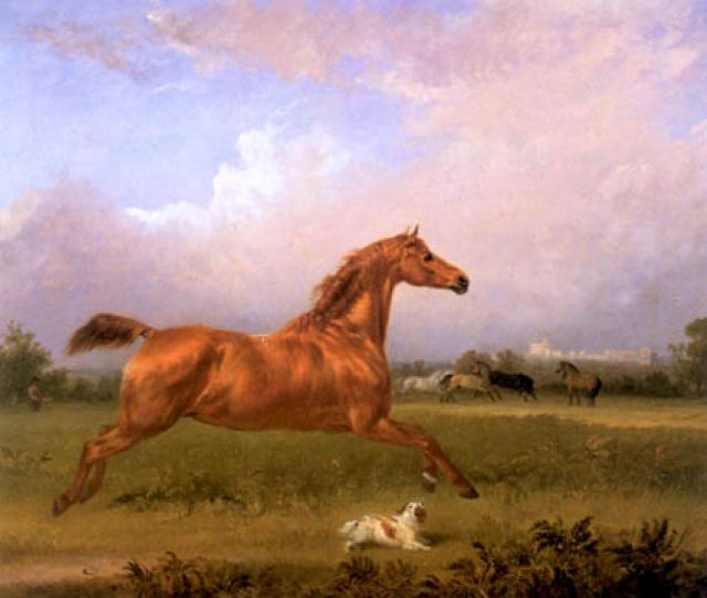 original horses 6 paintings
