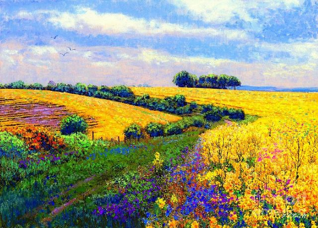 original fields of gold canada flowers painting