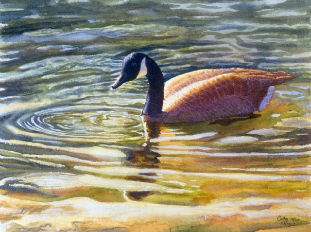 original goose canada animal bird paintings