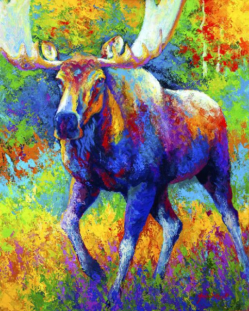 original the urge to merge bull moose marion rose canada animal painting