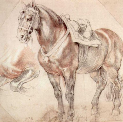 peter paul rubens etude of horse oil painting