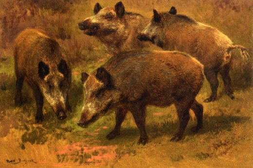 rosa bonheur four boars in a landscape painting