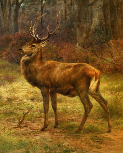 rosa bonheur stag in an autumn landscape paintings