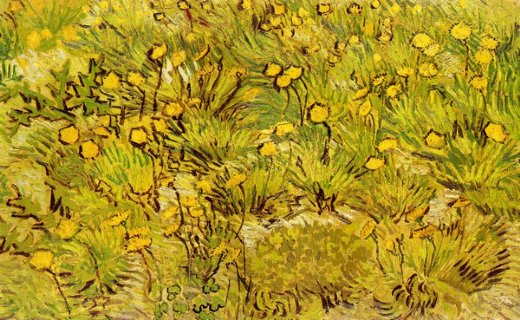 vincent van gogh a field of yellow flowers painting