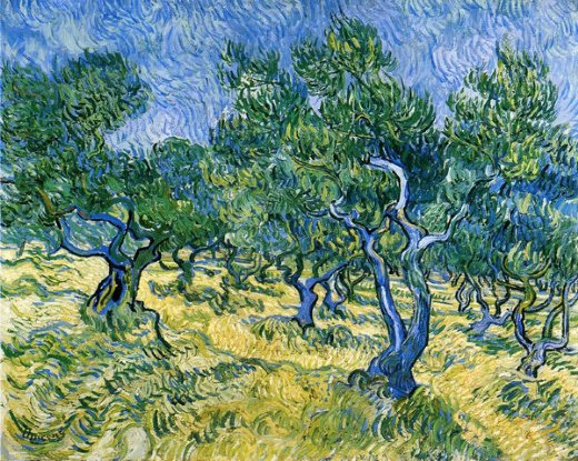 vincent van gogh olive grove ii paintings