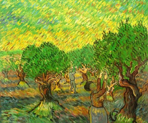 vincent van gogh olive grove with picking figures ii painting
