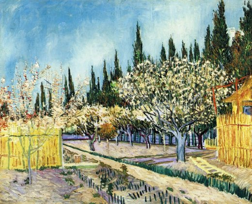 vincent van gogh orchard surrounded by cypresses paintings