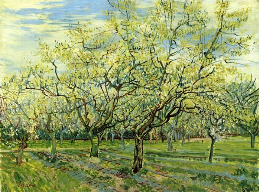 vincent van gogh orchard with blossoming plum trees paintings