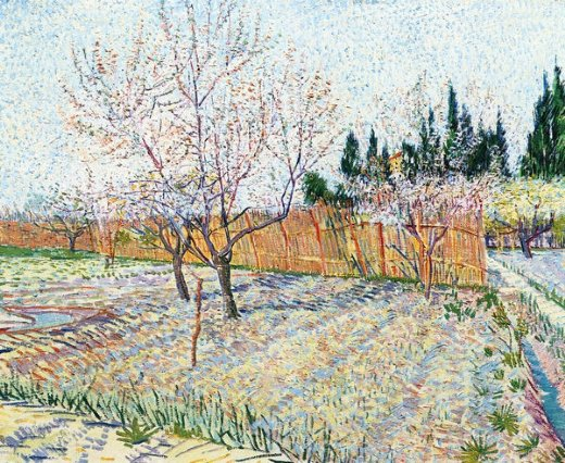 vincent van gogh orchard with peach trees in blossom painting