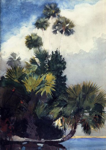 winslow homer palm trees florida paintings