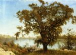 a view from sacramento by albert bierstadt painting