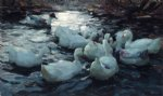 ducks feeding by alexander koester art
