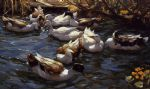 ducks in the reeds under the boughs by alexander koester painting