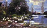 alexander koester acrylic paintings - ducks on a riverbank on a sunny afternoon by alexander koester