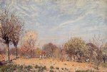 alfred sisley apple trees in flower spring morning paintings