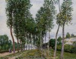 alfred sisley watercolor paintings - lane of poplars on the banks of the loing by alfred sisley