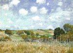 alfred sisley original paintings - meadow by alfred sisley
