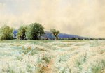 alfred thompson bricher the daisy field painting 37209