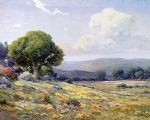 angel espoy famous paintings - california wildflowers by angel espoy