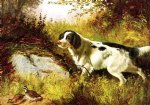 dog and quail by arthur fitzwilliam tait painting
