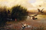 arthur fitzwilliam tait watercolor paintings - duck shooting by arthur fitzwilliam tait