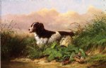 arthur fitzwilliam tait watercolor paintings - setter and woodcock by arthur fitzwilliam tait