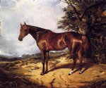arthur fitzwilliam tait watercolor paintings - thoroughbred by arthur fitzwilliam tait