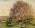 camille pissarro walnut tree in spring paintings