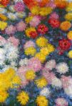 chrysanthemums 4 by claude monet paintings