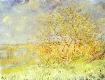 spring 1880 by claude monet paintings