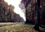 the road to chailly by claude monet paintings